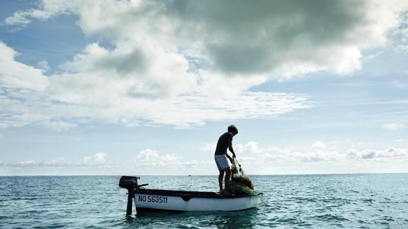 Nettoyage filet de pêche
